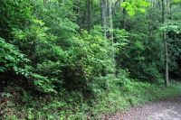 Home for sale: Lot#13 Whispering Springs Ln., Nantahala, NC 28781