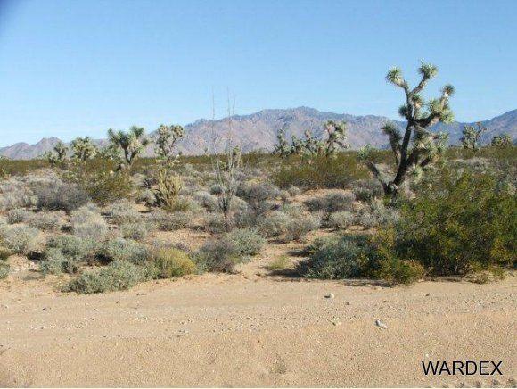 3529-D Arroyo Rd., Yucca, AZ 86438 Photo 4