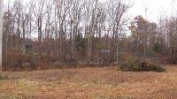 Home for sale: 0 Oakwood Dr., Scottsville, KY 42164