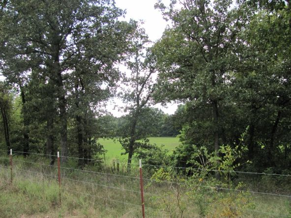 16.35 Acre Ar 247 Bypass, Pottsville, AR 72858 Photo 2