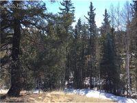 Home for sale: 143 & 167 Mt. Powderhorn Ln., Florissant, CO 80816