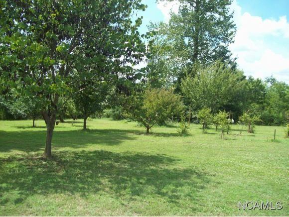 477 Co Rd. 1731, Holly Pond, AL 35083 Photo 11