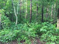 Home for sale: 0 Big Fork Rd., Chattanooga, TN 37405