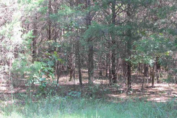 3.5 Acres Ravine Rd. & Mocking Bird Ln., Tumbling Shoals, AR 72581 Photo 6