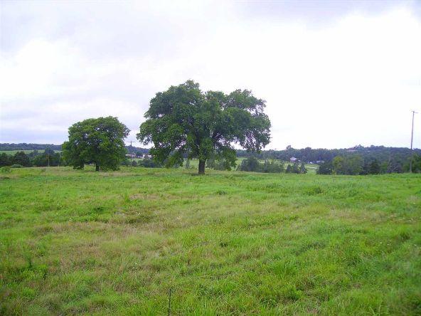 17001 N. Hwy. 7, Lead Hill, AR 72644 Photo 6