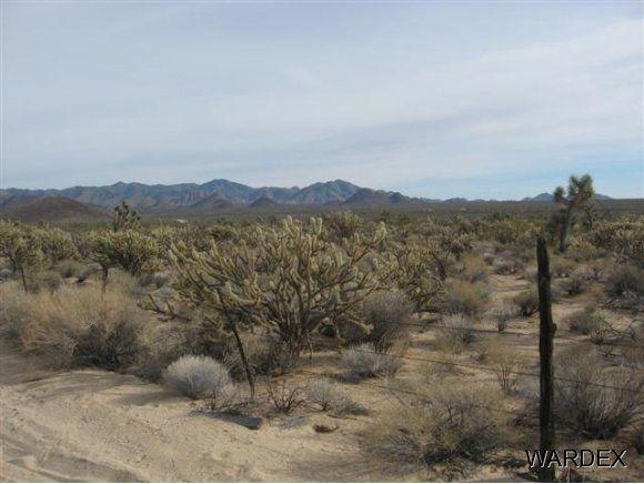 11932 S. Sherry Rd., Yucca, AZ 86438 Photo 22