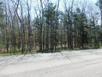 Home for sale: Wildwood Parcel A Rd., Manistee, MI 49660