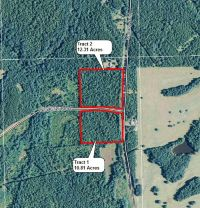 Home for sale: Tract 2 Wallace Rd., Pine Mountain, GA 31822