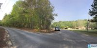 Home for sale: 0 Charnell Dr., Ashville, AL 35953