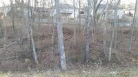 Home for sale: Lot 184 Block A South Cloverdale Ln., Battlefield, MO 65619
