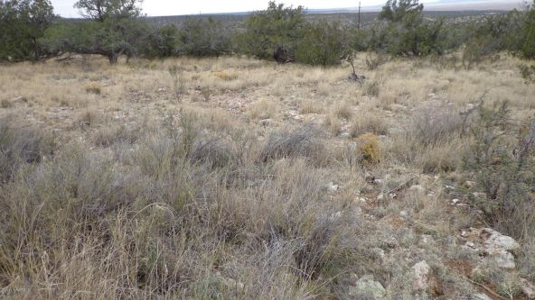 952 Bridge Canyon Unit 5 Lot 952, Seligman, AZ 86337 Photo 6