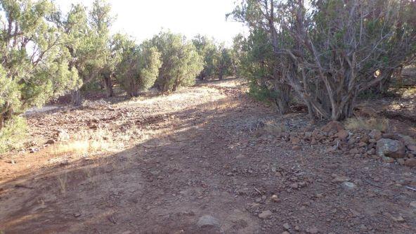 44201 N. Crazy Coyote Way, Seligman, AZ 86337 Photo 4