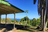 Home for sale: 32-1065 Hawaii Belt Rd., Ninole, HI 96773