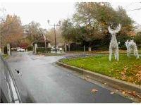 Home for sale: Hidden Oak, Danville, CA 94506