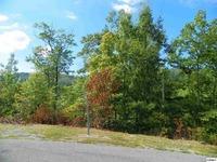 Home for sale: Lot 10 St. Of Dreams Rd., Gatlinburg, TN 37738