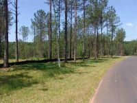 Home for sale: Lot 142 Peninsula Pointe South, West Union, SC 29696