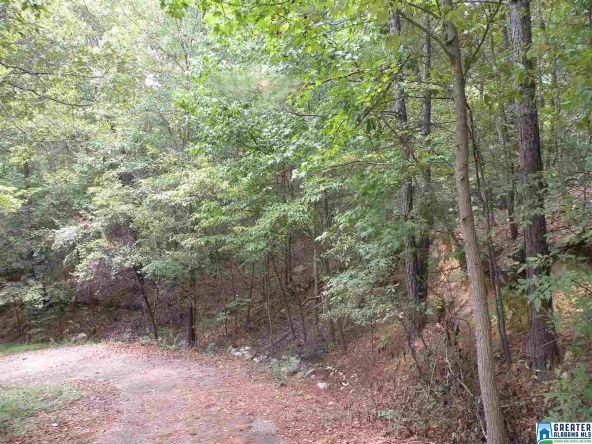245 E. Lake Hill Dr., Talladega, AL 35160 Photo 7