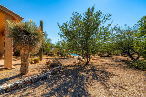 41324 N. Canyon Springs Dr., Cave Creek, AZ 85331 Photo 68
