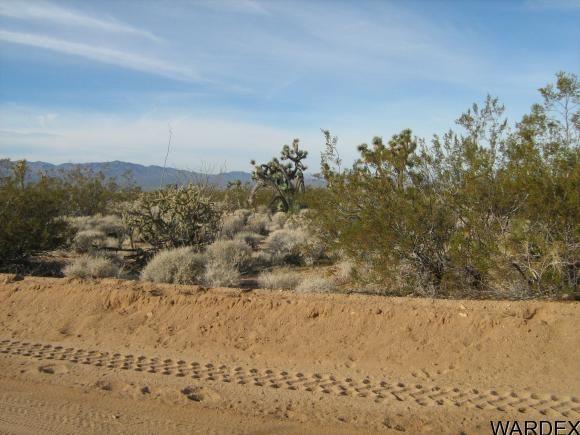 811 Kit Carson, Yucca, AZ 86438 Photo 10