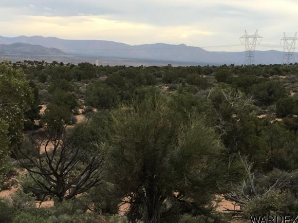 7340 N. Frerichs Ranch Rd., Hackberry, AZ 86411 Photo 9