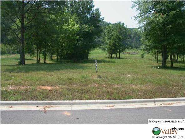 111 Lake Creek Dr., Guntersville, AL 35976 Photo 3