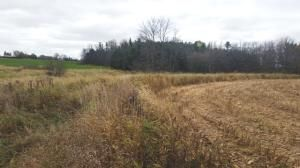 27.55 Acre State Hwy. 32, Sheboygan Falls, WI 53085 Photo 13