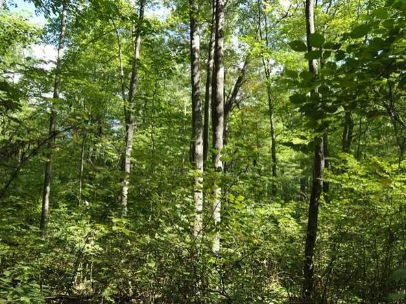 Lot 13 Sunset Dr., Tomahawk, WI 54487 Photo 40