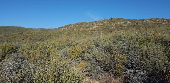 20 Freeport, Dewey, AZ 86327 Photo 97