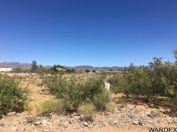 Home for sale: 788 S. Salt Rd., Golden Valley, AZ 86413