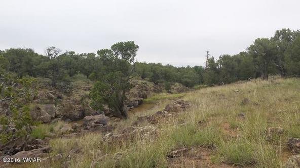 8273 Ridge Dr., Show Low, AZ 85901 Photo 2