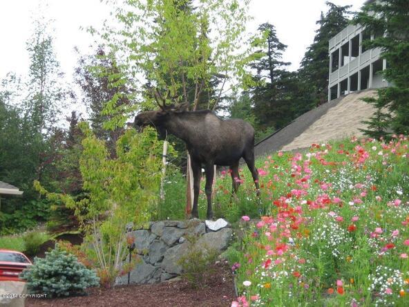 L14 B6 Manorwood Pointe Cir., Anchorage, AK 99516 Photo 8