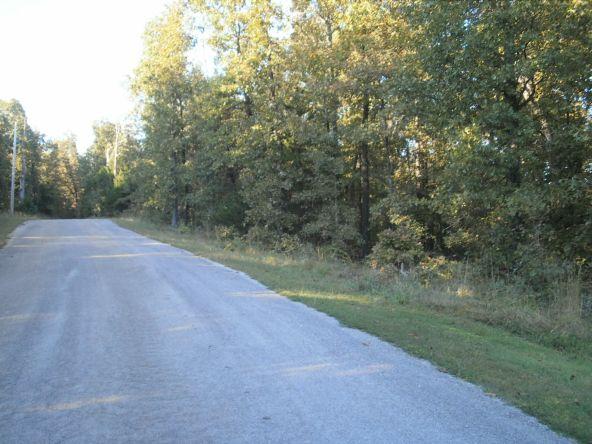 21 Walla Walla Dr., Cherokee Village, AR 72529 Photo 7