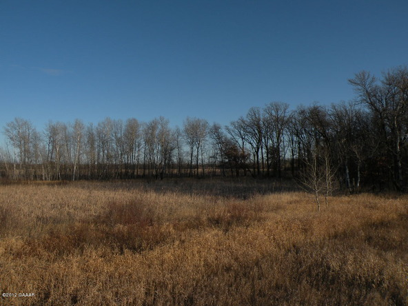 County Rd. 138, Parkers Prairie, MN 56361 Photo 21