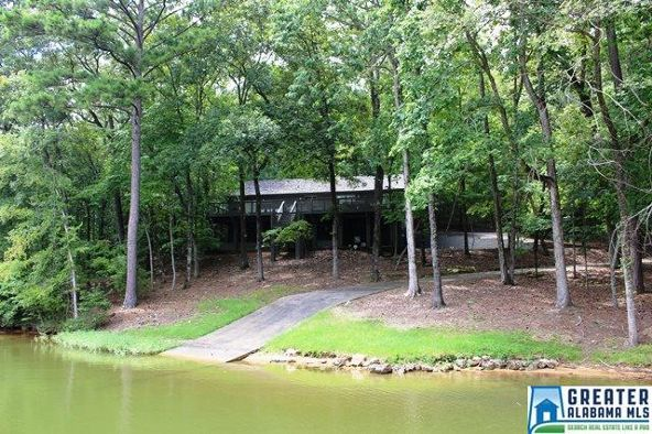 760 Black Acres Rd., Cropwell, AL 35054 Photo 72