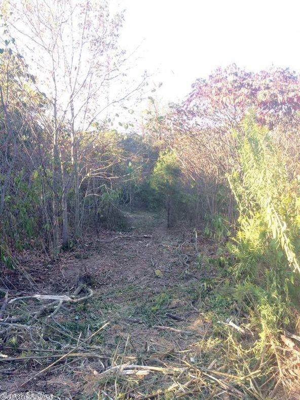 17430 Forest Service Rd. 18, Havana, AR 72842 Photo 8