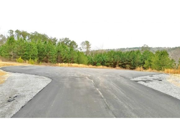 316 Co Rd. 907 (Lot 13), Crane Hill, AL 35053 Photo 3