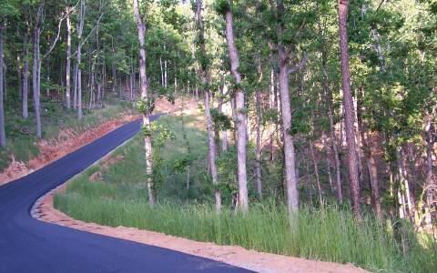 Lot 3 Trails End, Young Harris, GA 30582 Photo 3