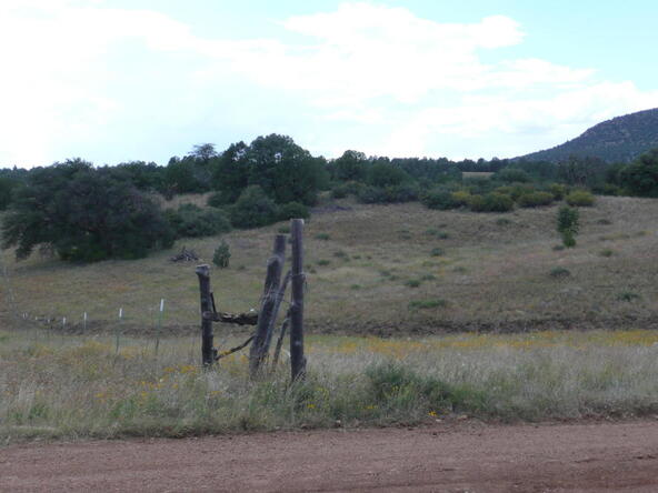 290 N. Navajo Trail, Young, AZ 85554 Photo 12