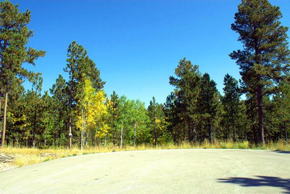 Lot 5, Powder House Trail, Lead, SD 57754 Photo 26