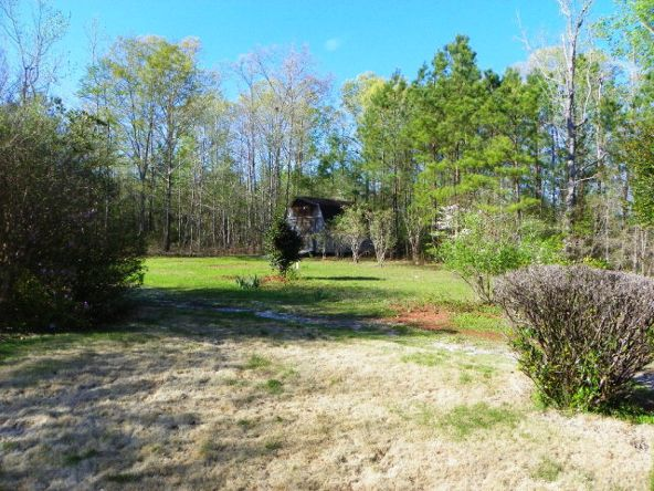 3045 Lee Rd. 250, Salem, AL 36874 Photo 19