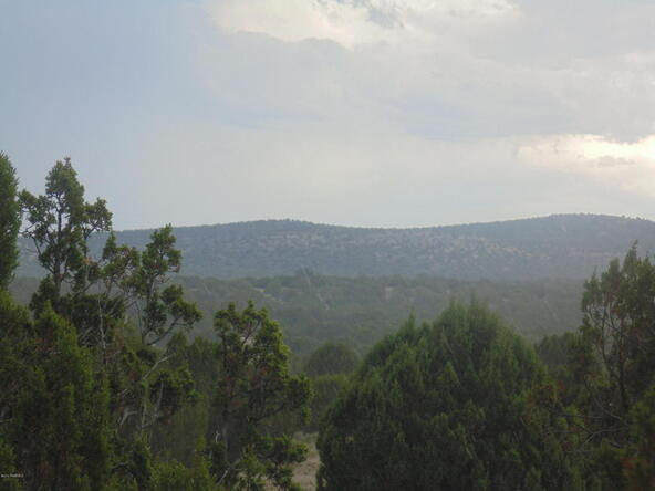 1368 Greenhorn Rd., Seligman, AZ 86337 Photo 6
