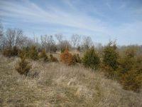 Home for sale: 1234 Burgin, Lawrenceburg, KY 40342