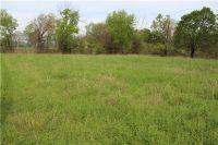 Home for sale: Tract 1 (1.51 Acres) Latta Rd., Canehill, AR 72717