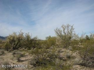 9741 N. Blue Bonnet Rd., Tucson, AZ 85742 Photo 9