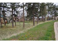 Home for sale: 621 Skyline Dr., Woodland Park, CO 80863