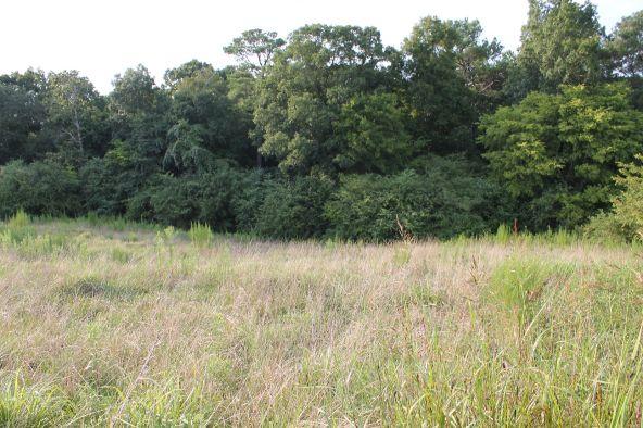 696 County Rd. 46, Addison, AL 35540 Photo 13