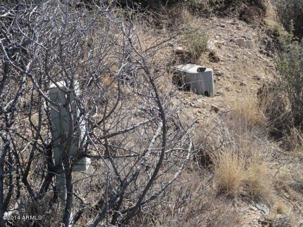 17850 S. Tawny Ln. S, Peeples Valley, AZ 86332 Photo 7