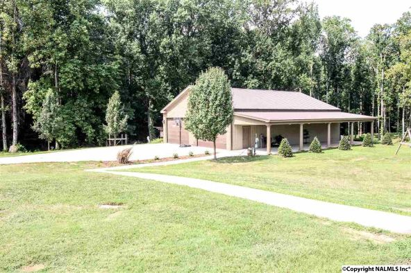 878 Butler Rd., New Market, AL 35761 Photo 35