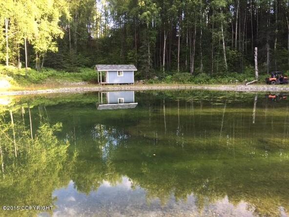 18435 W. Jenny Ln., Big Lake, AK 99652 Photo 9