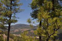 Home for sale: Lot 5a Cielo Vista Loop, Jemez Springs, NM 87025